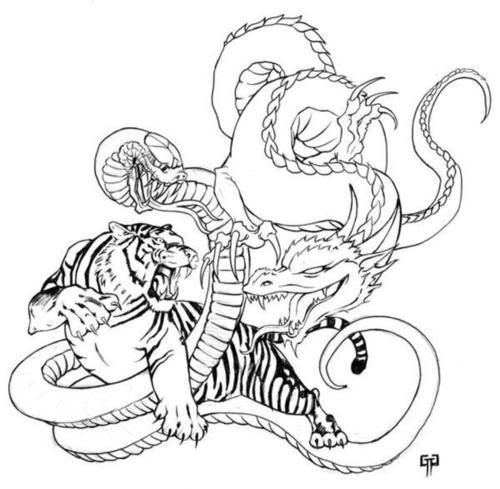 Tiger Dragon Snake My First Board Pinterest Snake Tigers And