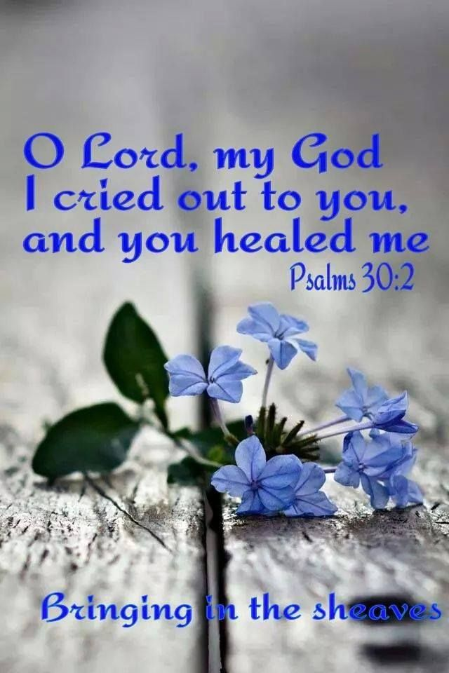 Thank You God Quotes For Healing