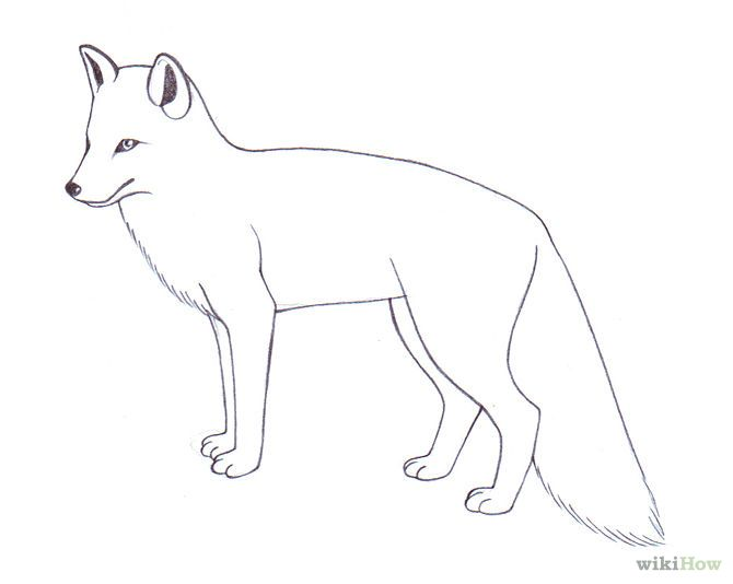 Line Drawing Fox : Draw a fox foxes doodles and illustrations