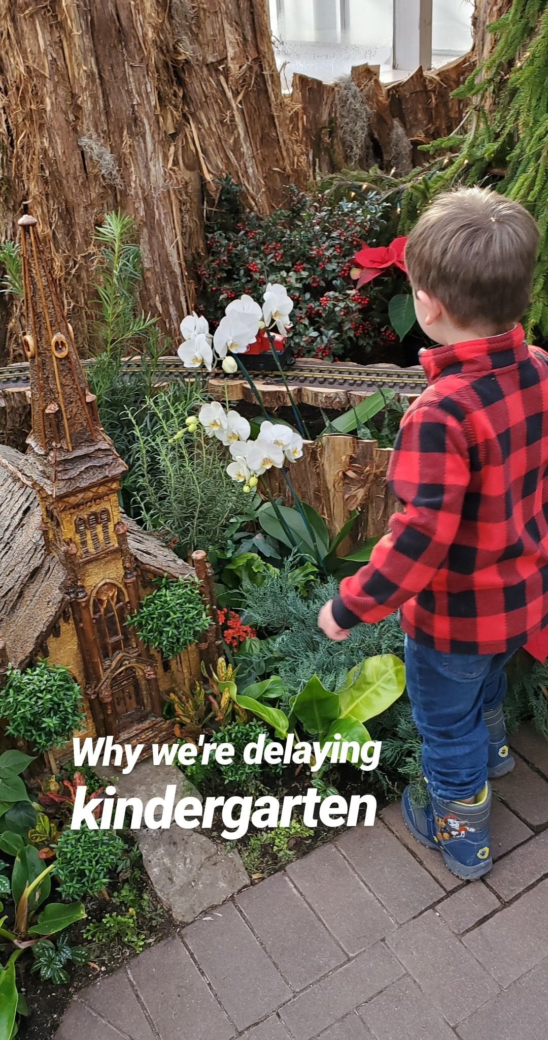 Delaying Kindergarten My Thoughts On Education In
