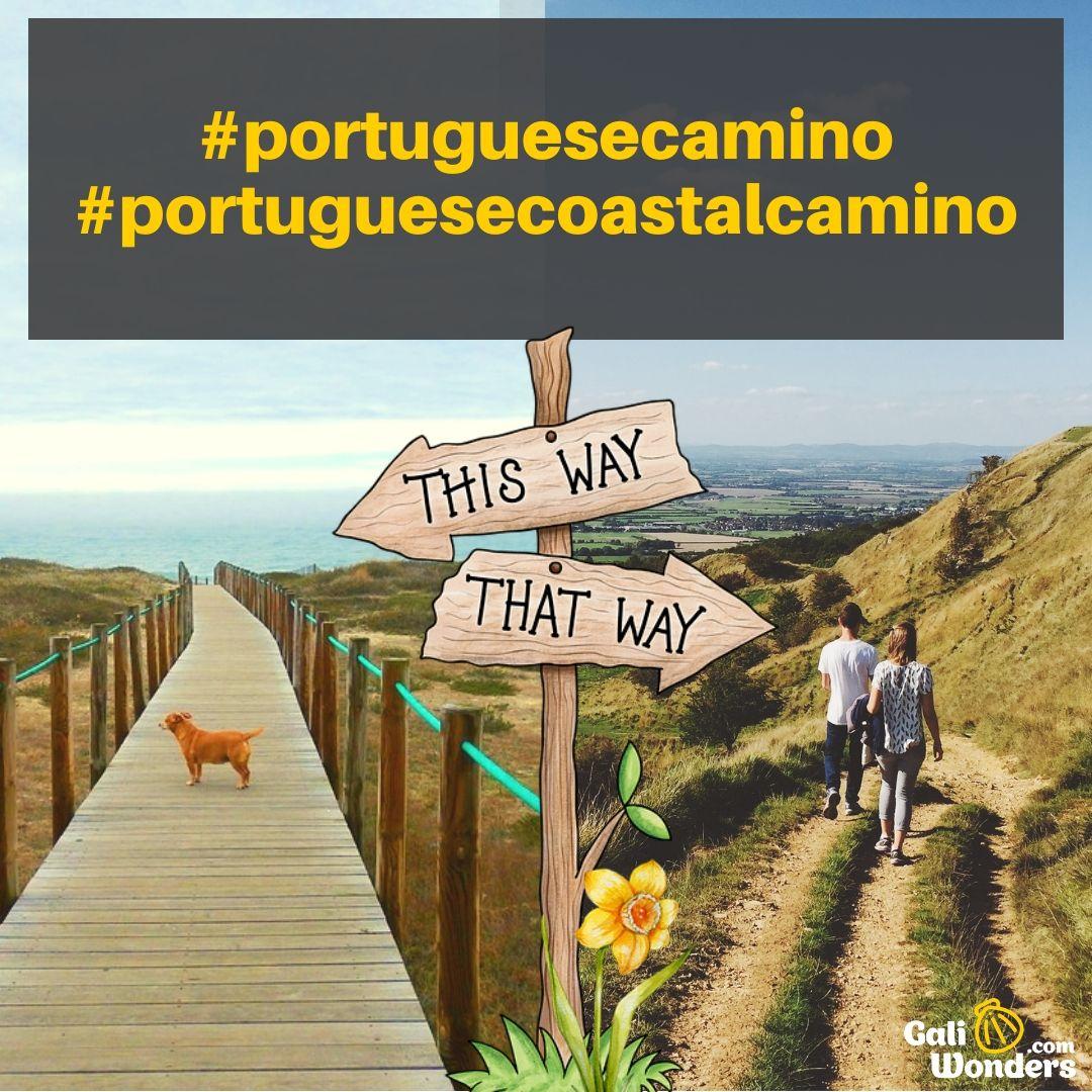 Portuguese Way Or Coastal One In 2020 Camino Portuguese Camino De Santiago Camino De Santiago Route