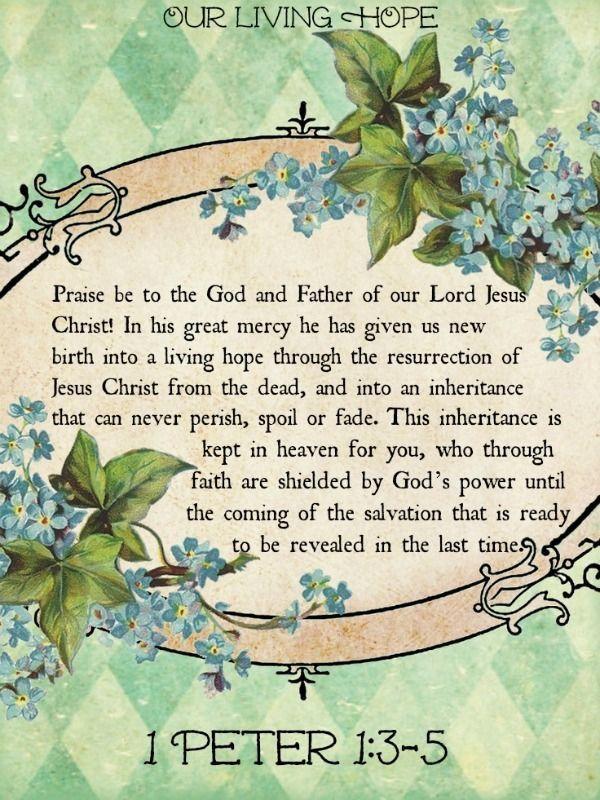 Our Living Hope 1 Peter 135 Jesus resurrection, Faith