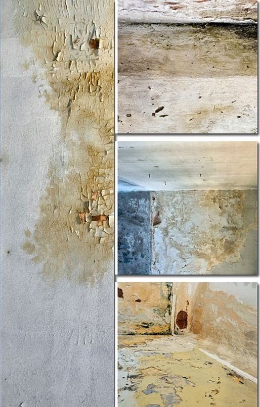 Do The Walls In Your Home Look Similar To This Picture Mold Or