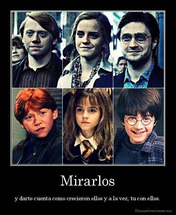 Look It Memes De Harry Potter Harry Potter Fotos De Harry Potter
