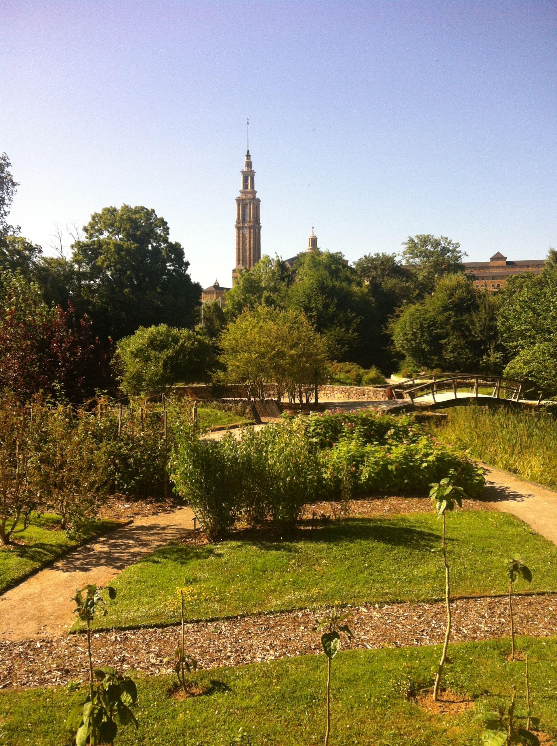 Vista de la laboral desde el jard n bot nico gijon for El jardin botanico gijon