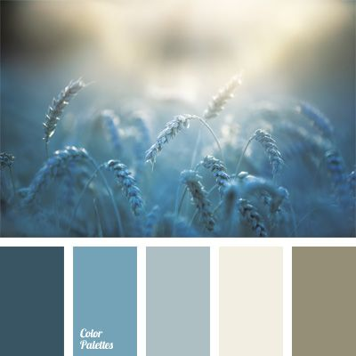 blue and brown, blue color palettes, cold tone, contrasting colors