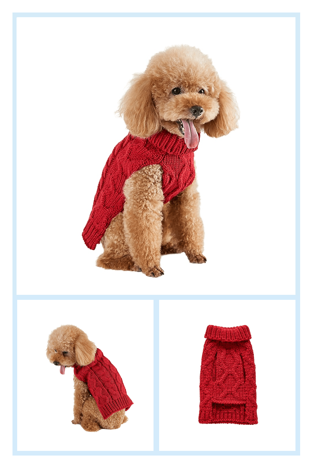 Bee & Willow Home Medium Cable Knit Dog Sweater In Red