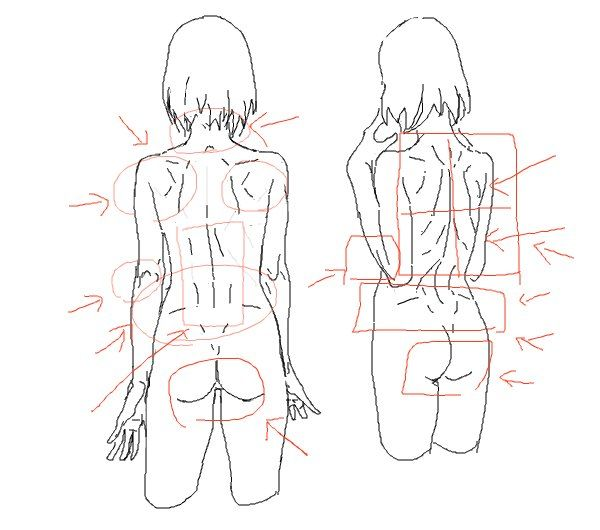 Twitter | Anatomy reference, Drawing poses, Sketches tutorial