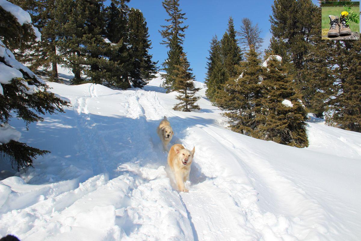 """""""Wichtig ist, dass du dich wohlfühlst, dass du die Natur um dich herum spürst – dann macht Bergsteigen unheimlich glücklich."""" Hans Kammerlander"""