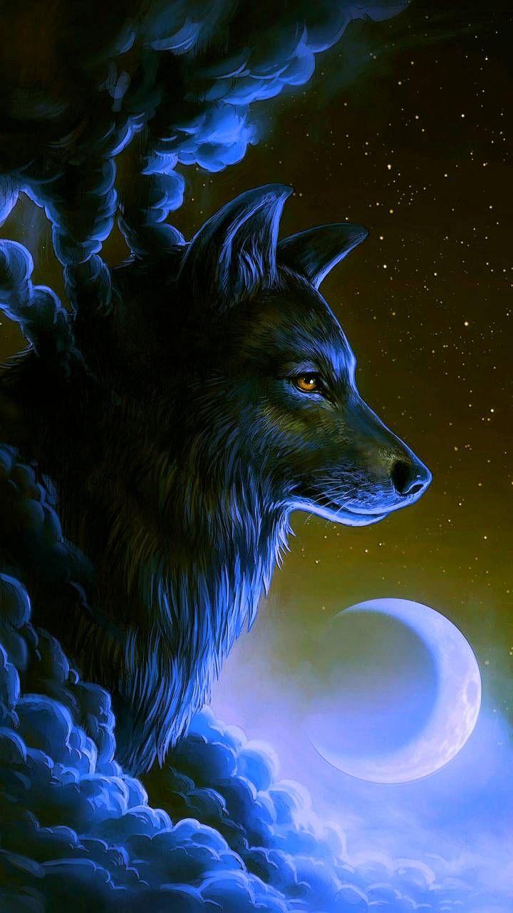 Download Wolf Wallpaper By Georgekev 38 Free On Zedge