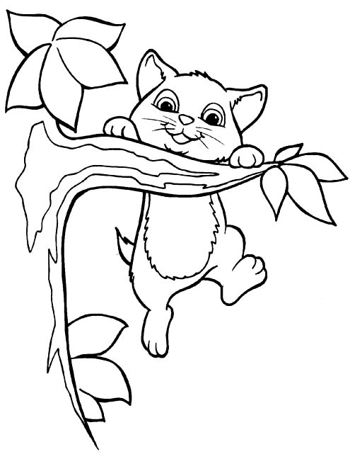 Hang In There Animal Coloring Pages Kittens Coloring Cat Coloring Page