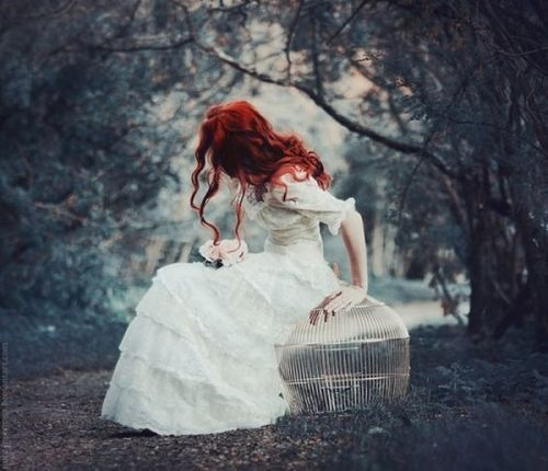 些许童话些许魔幻 #forest