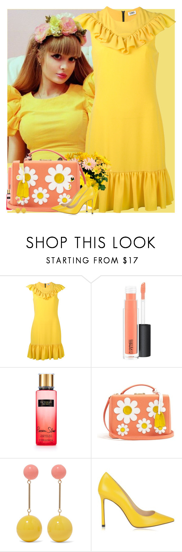 """Bez naslova #3250"" by gita016 ❤ liked on Polyvore featuring Sonia by Sonia Rykiel, MAC Cosmetics, Victoria's Secret, Mark Cross, J.W. Anderson and Jimmy Choo"