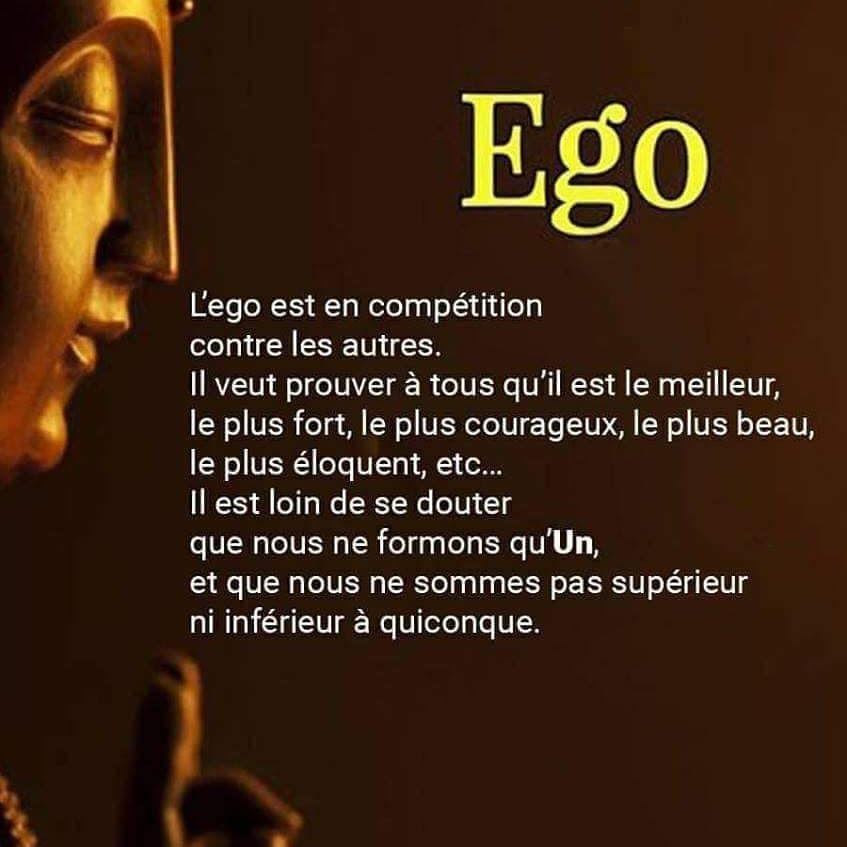 L Ego Follow Opportunite Du Net Success