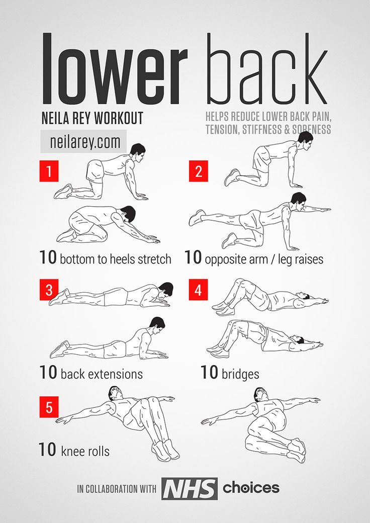 Lower Back Workout Fitness Lower back exercises, Back