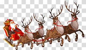 Santa Claus Reindeer Sled Center Transparent Background Png Clipart Santa Claus Reindeer Christmas Lettering Reindeer