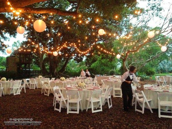 Marie Selby Botanical Gardens Wedding In Sarasota Florida 1125 Botanical Gardens Wedding Botanical Gardens Botanical