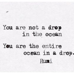 """You are not a drop in the ocean. You are the entire ocean in a drop."" (#quote #Rumi)"