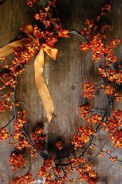 Lovely bittersweet wreath