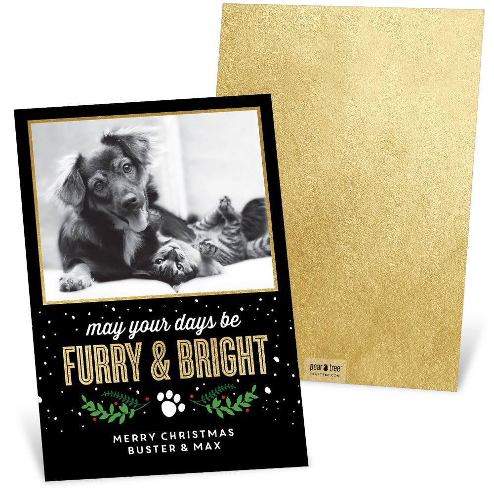 Furry And Bright Christmas Card Christmas Cards And Holiday