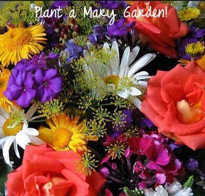 Plant a Mary Garden!
