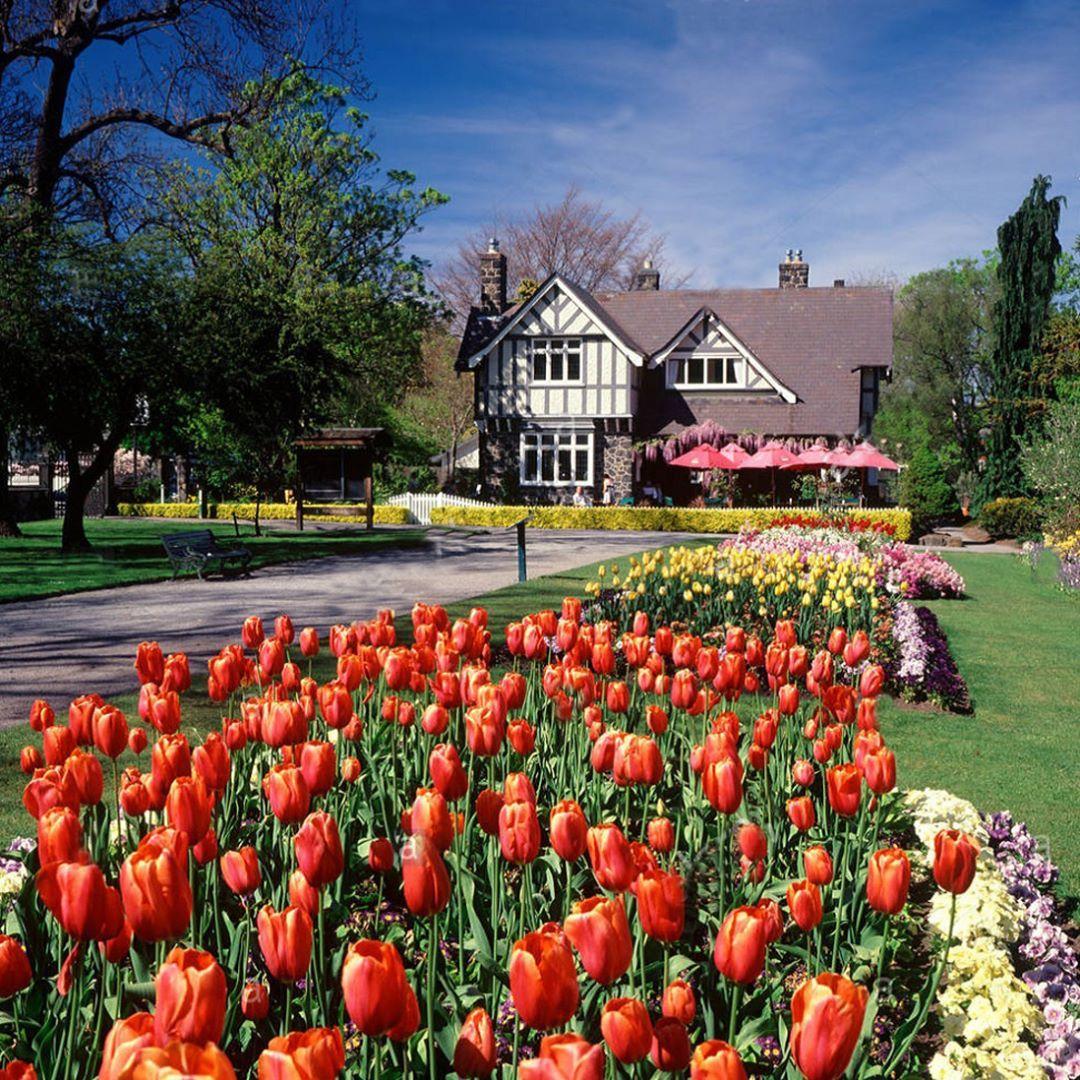 Wow My Beautiful Christchurch A Scenic Pic In Christchurch New