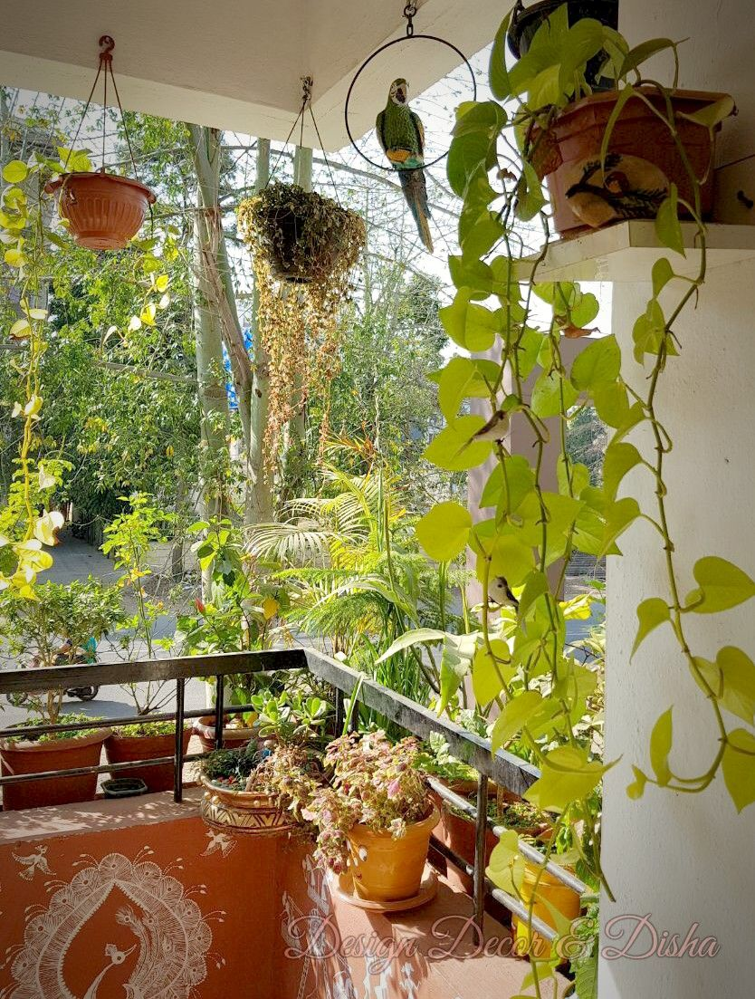 Indian Balcony Decor Preeti Deshmukh Home Garden Design