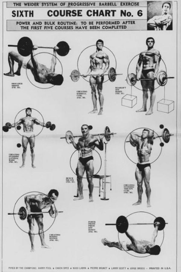 The Weider System Of Progressive Barbell Exercise Barbell Workout Physique Training Muscle Building Workouts