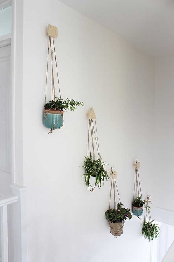 Wall Of Hanging Plants With Diy Plywood Hookacrame Hangers Growing Es