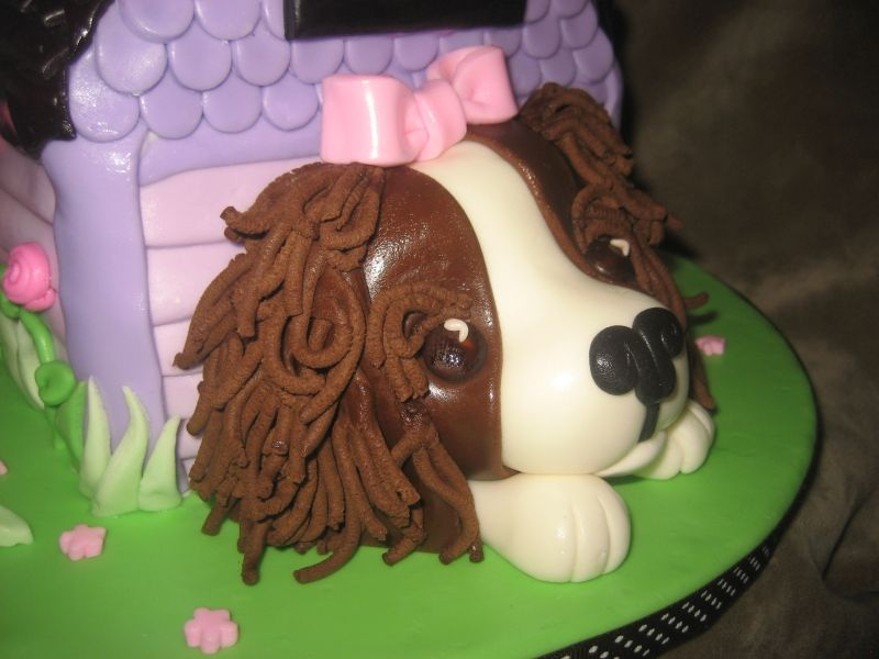 Cavalier King CharlesCAKE Baked by Brownie Pinterest King