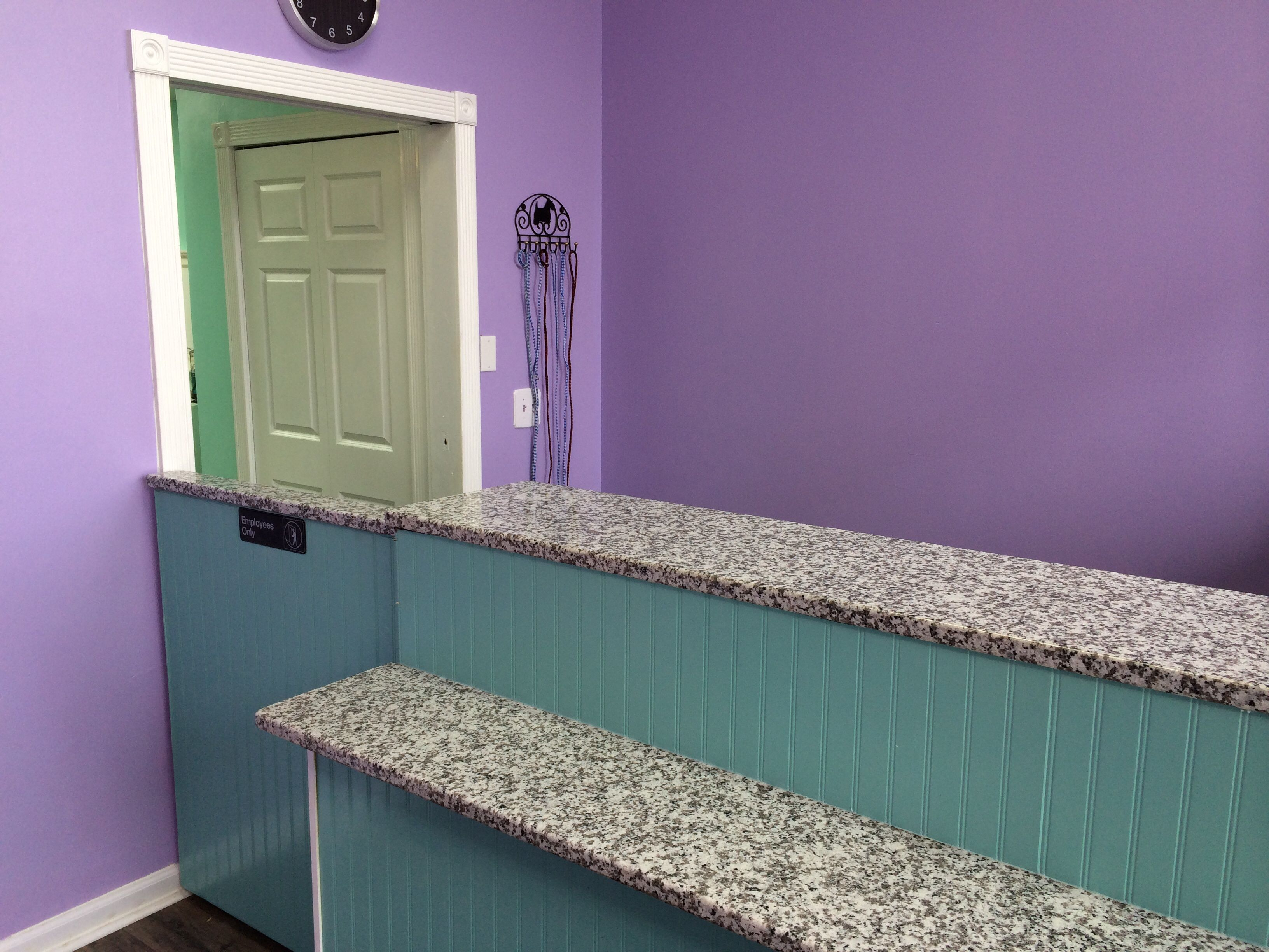 Our new granite counter the upscale tail pet grooming salon our new granite counter the upscale tail pet grooming salon naperville 630 632 tail theupscaletail solutioingenieria Image collections
