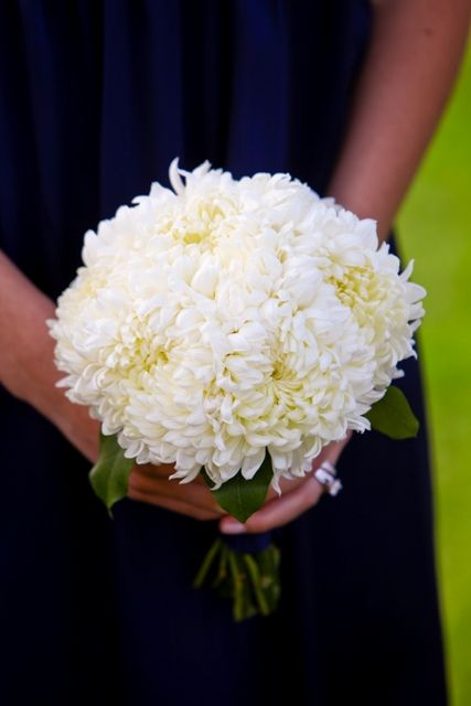 White Football Mums Green Foliage Bridesmaid S Wedding Posy
