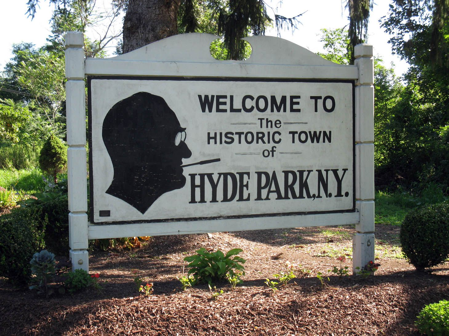 Image result for fdr dedicated hyde park stadium
