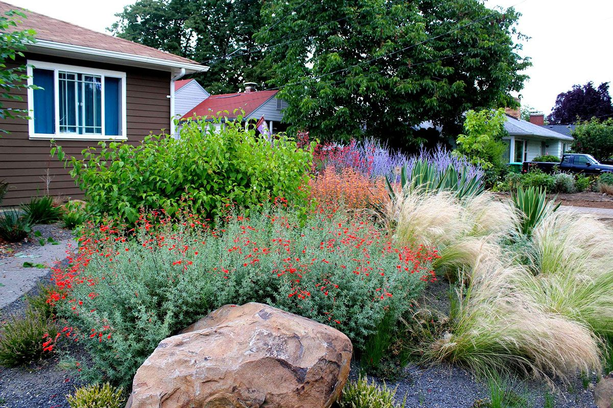 drought tolerant landscaping | Drought-Tolerant Garden with Gravel ...