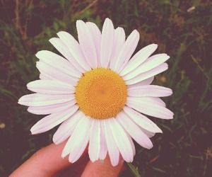 Margarida ♥ | via Tumblr