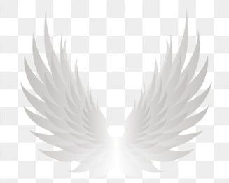 Asas Asas De Anjo Brilhando Asas Legais Asas Asas De Anjo Asas Frias Brilhantes Imagem Png E Psd Para Download Gratuito Angel Wings Png Wings Png White Angel Wings