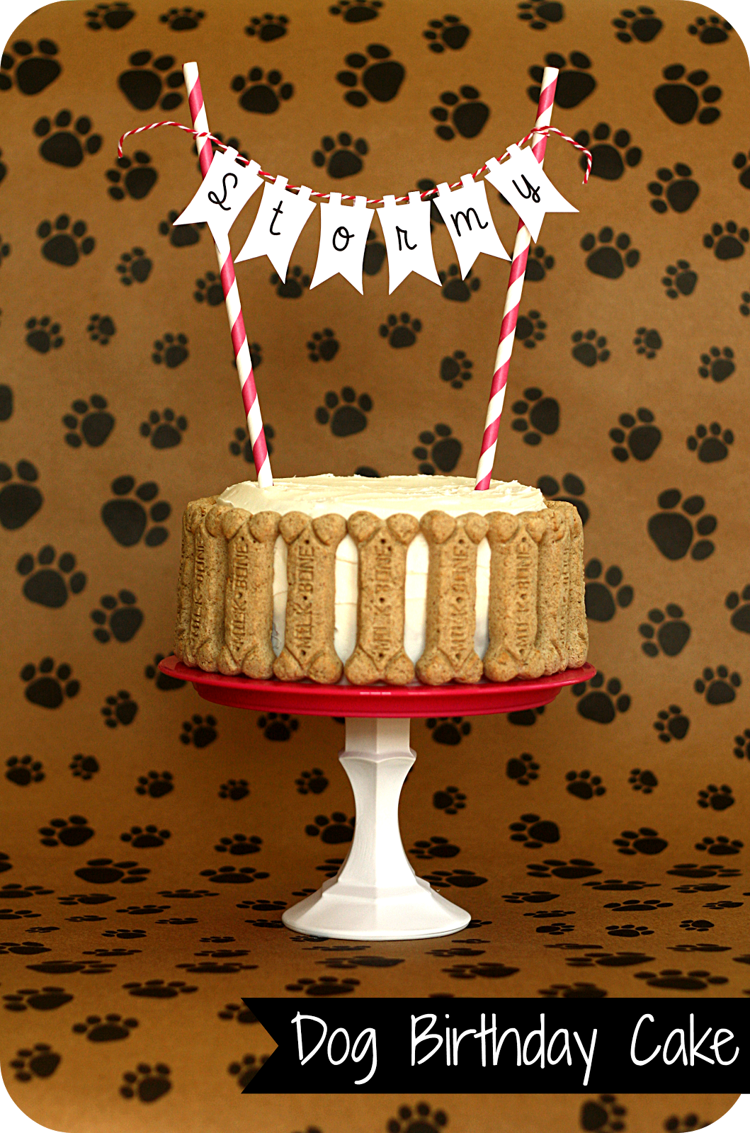 Dog Birthday Cake With Bones Keepingmycentsblogspot 2013