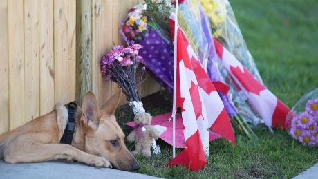 Hamilton will name leash-free dog park after Cpl. Nathan Cirillo