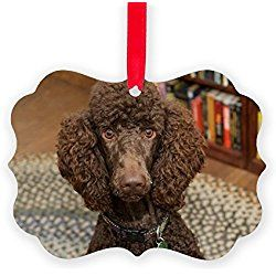 A Chocolate Brown Standard Poodle Christmas Ornament Decorative Tree Ornament Poodle Christmas Ornaments Ornaments