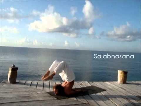 sivananda yoga  sivananda yoga sivananda hatha yoga