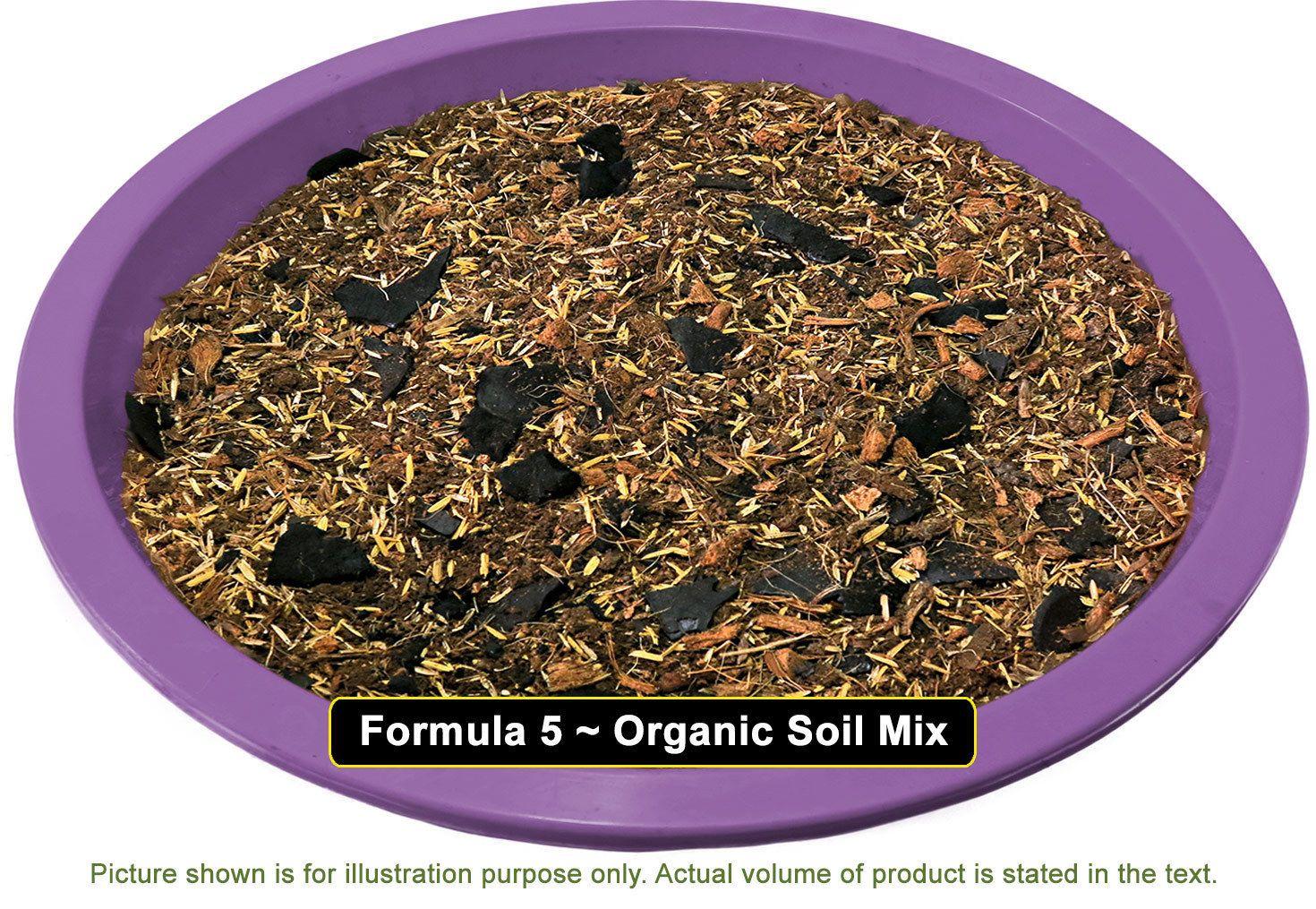Cactus Succulent Potting Soil Mix (Low Moisture Formula) + Charcoal ...