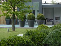 Anne laansma ontwerpburo voor tuinen nl gardens