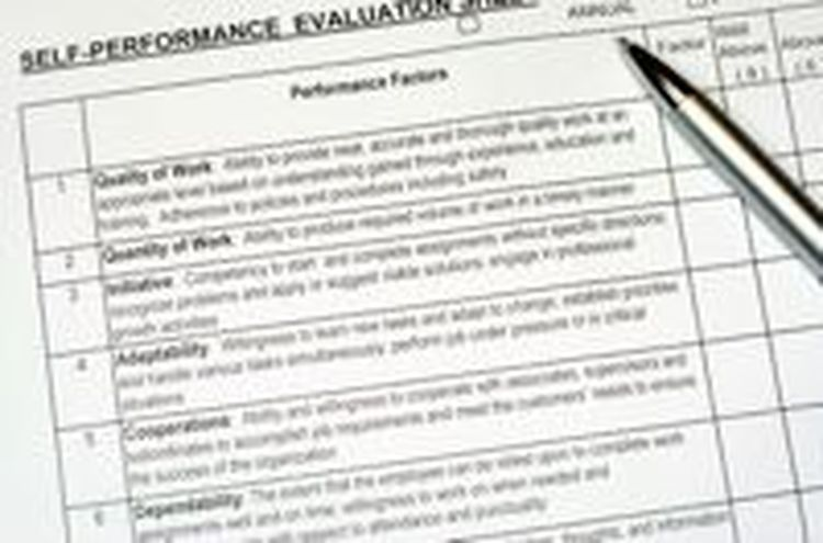 A Sample Performance Development Plan Form