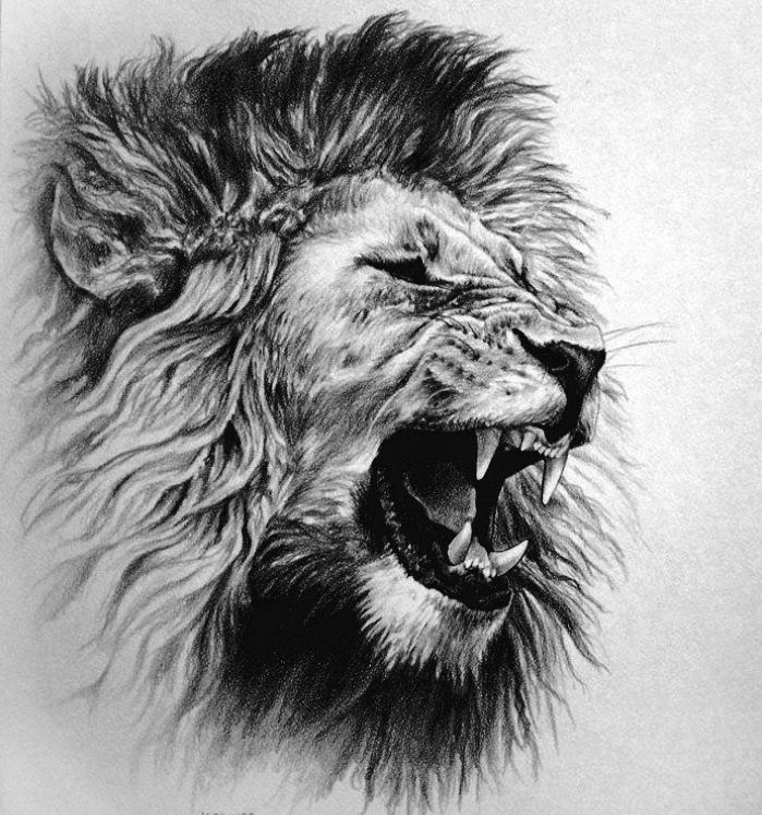 Roaring Lion Profile Tattoo Pin by Russell woodlan...