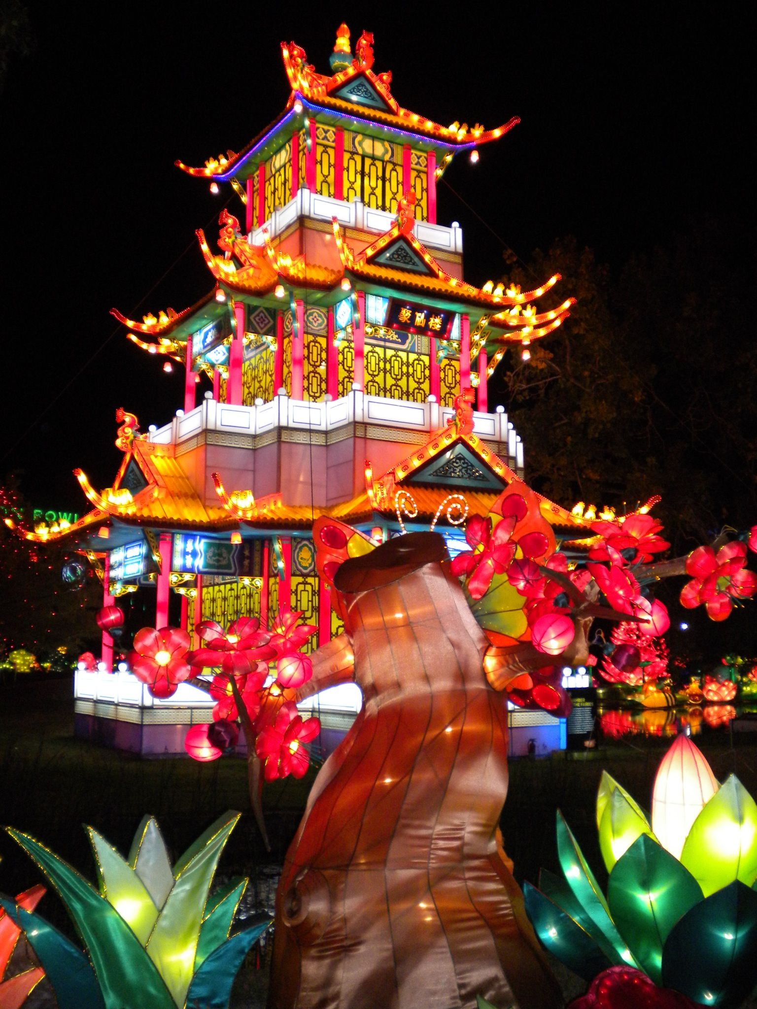 Dallas Chinese Lantern Festival 2012 Chinese lantern