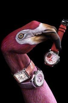 Stern Flamingo, Guido Daniele Hand Painting