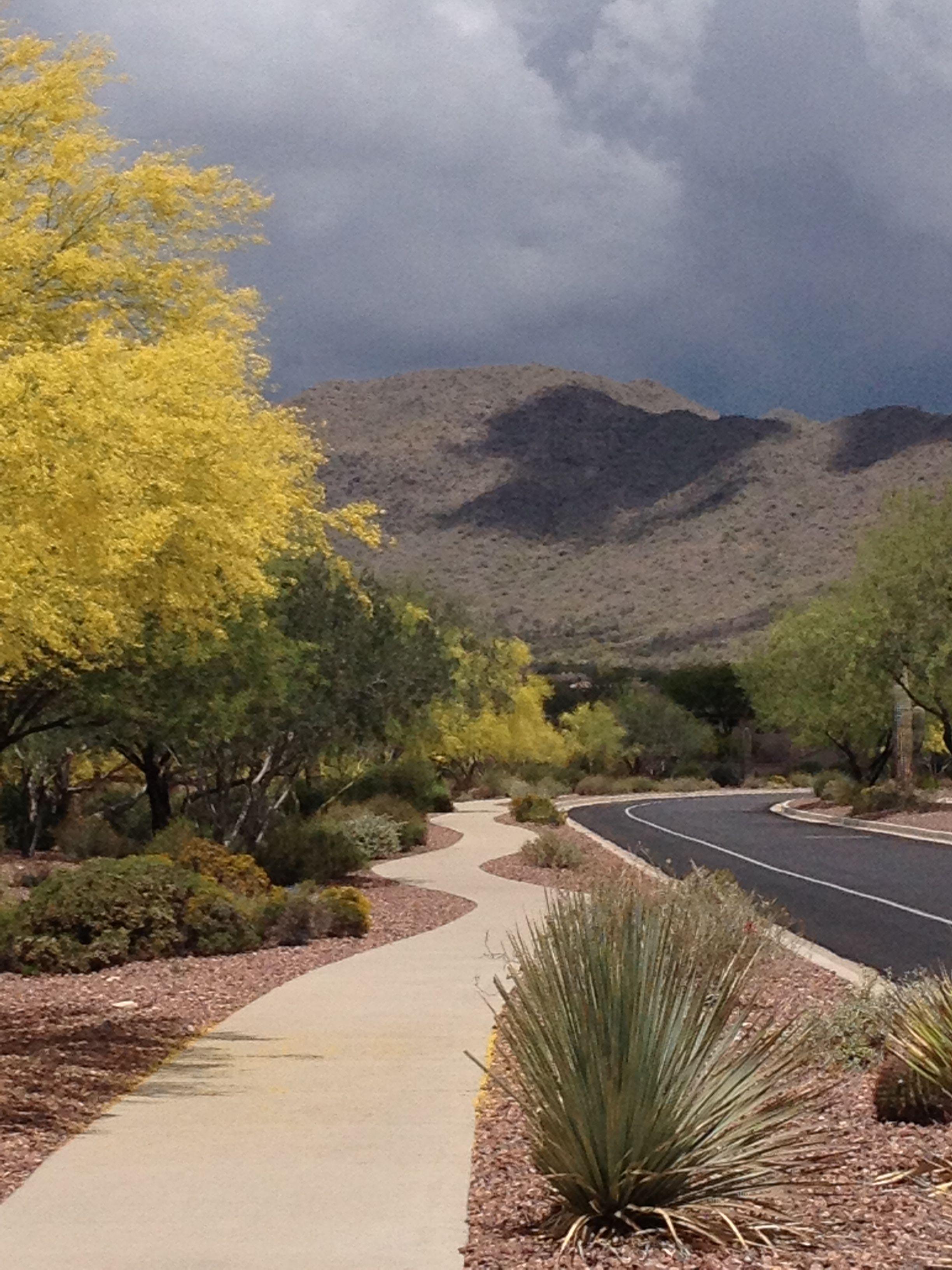Anthem Az In Arizona Anthem Arizona Anthem Arizona