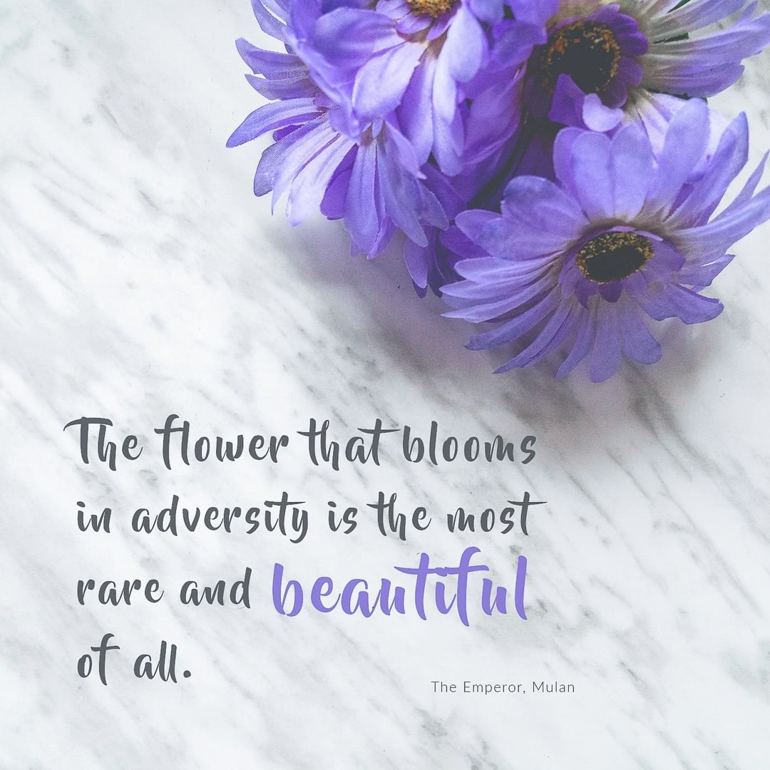 The Flower That Blooms In Adversity Is The Most Rare And Beautiful Of All What Kind Of Flowers Do You Want To Be Adversity Bloom Flowers