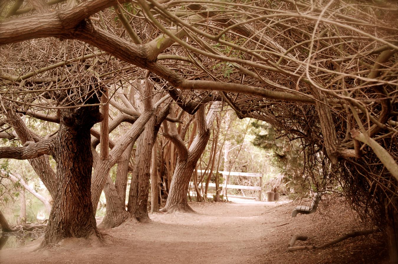 El Dorado Nature Center (With images) Places to visit