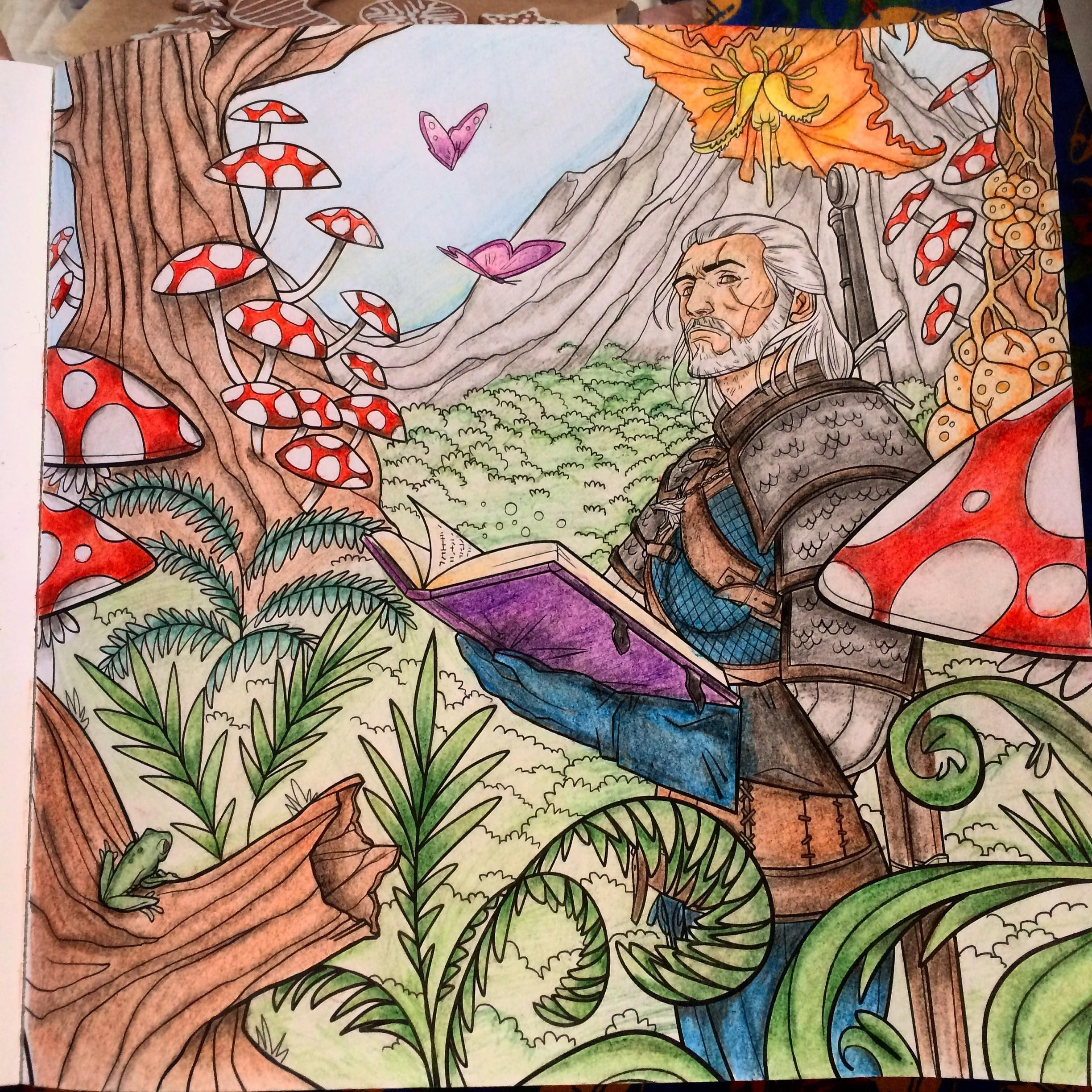 Got The Witcher Coloring Book From My Boyfriend As A Christmas Present This Is The First One I Ve Made Thought W The Witcher Coloring Books The Witcher Books